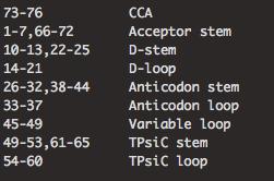 tRNA_domains
